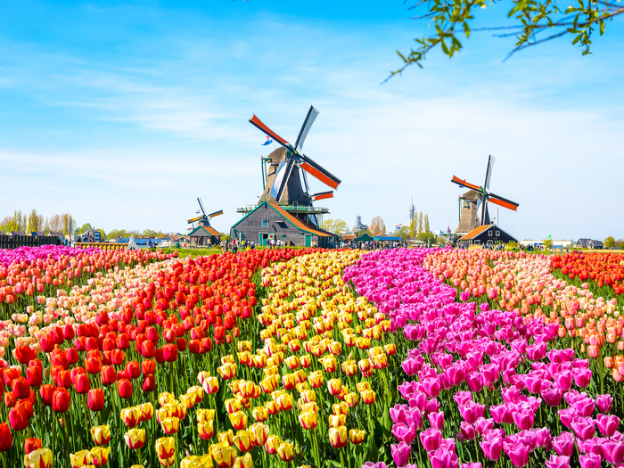 The Most Romantic Tourist Cities in the Netherlands